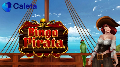 Casino Other Bingo Pirata