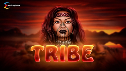 Play online casino Slots Tribe